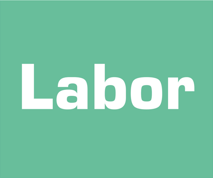 NETdental Labor